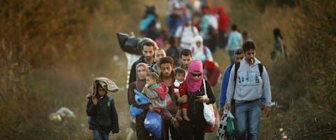 Migranten zijn in Servië op weg naar een gat in het grenshek met Hongarije