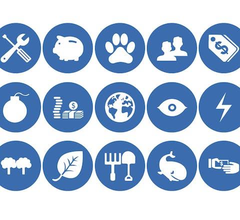 De 21 thema's van de Eerlijke Verzekeringswijzer