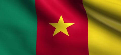 De vlag van Kameroen
