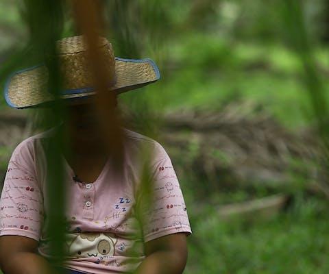 Arbeidster op een palmolieplantage in Indonesië. In 2016 onthulde Amnesty dat mensenrechtenschendingen op dergelijke plantages op grote schaal voorkomen.