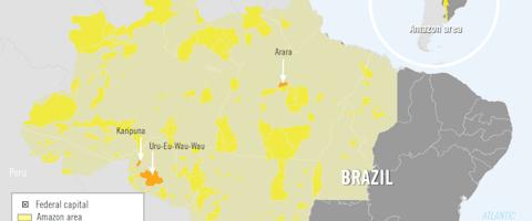 De Amazone in Brazilie, met inheemse gebieden in geel en gebieden waar Amnesty begin 2019 onderzoek deed in oranje.
