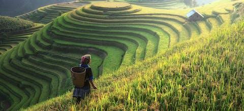 Vrouw aan het werk op het Chinese platteland